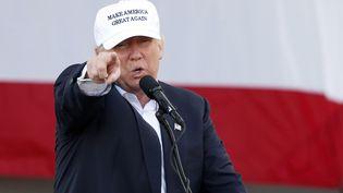 Le candidat républicain Donald Trump lors d'un meeting de campagne en Floride, mercredi 2 novembre 2016. (RHONA WISE / AFP)