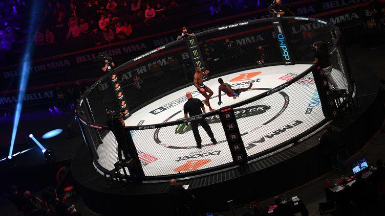 Le show était au rendez-vous à Bercy pour la première soirée de MMA en France  (FRANCK FIFE / AFP)