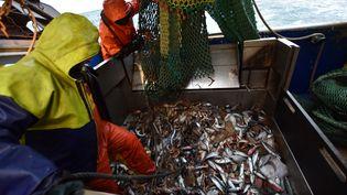 Des pêcheurs français dans la Manche, le 28 septembre 2020. (NICOLAS GUBERT / AFP)