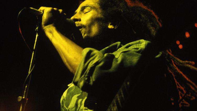 Bob Marley sur scène à Brighton, en Angleterre, le 8 juillet 1980 (CHRIS CRASKE / MAXPPP)