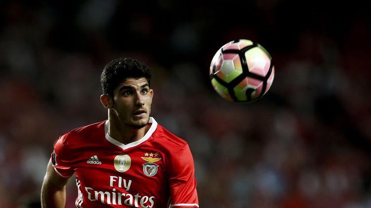 Le joueur portugais Gonçalo Guedes (CARLOS PALMA / NURPHOTO)