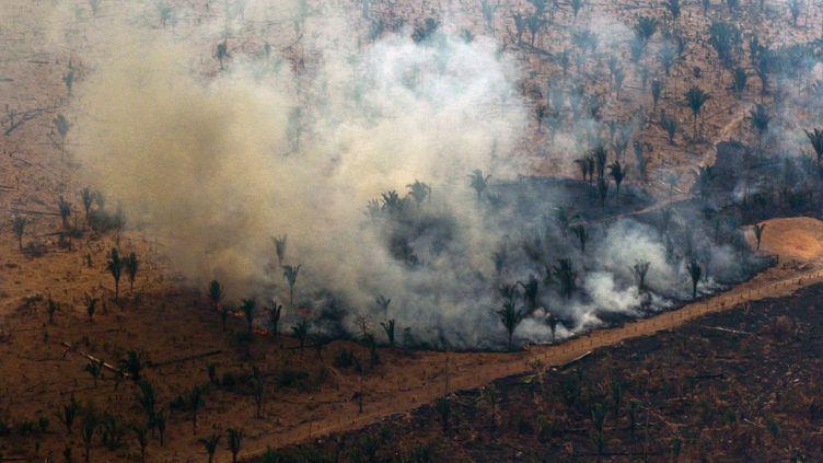 Vue aérienne des alentours de Boca do Acre, en Amazonie, dans le nord-ouest du Brésil, samedi 24 août 2019. (LULA SAMPAIO / AFP)