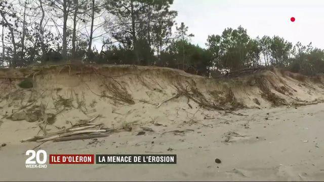 Ile d'Oléron : la menace de l'érosion