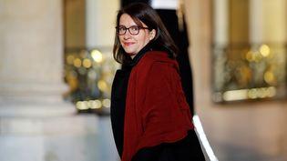 Cécile Duflot à l'Elysée, le 20 décembre 2016. (BENOIT TESSIER / REUTERS)