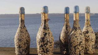 Vingt mille bouteilles ont été mises à la mer, dans une cave sous-marine. France Télévisions a pu assister à la mise à l'eau. (France 3)