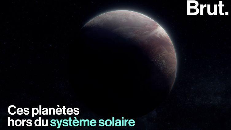 Florence Porcel, vulgarisatrice scientifique et youtubeuse, rappelle les enjeux de l'étude des exoplanètes. (BRUT)