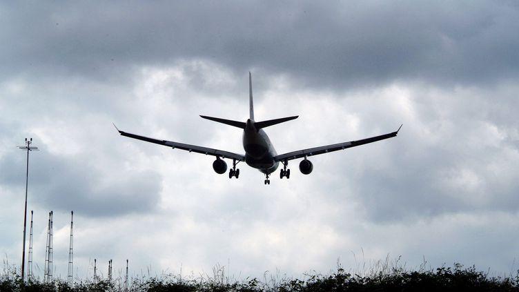 Un avion atterrissant sur les pistes de l'aéroport d'Orly (Val-de-Marne), le 4 avril 2014. (MAXPPP)