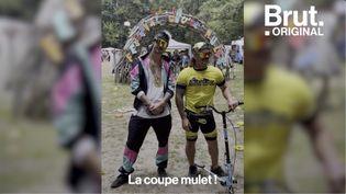 VIDEO. Pendant ce temps-là dans la Creuse, on participe au championnat d'Europe de coupe mulet (BRUT)