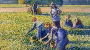 """La cueillette"" de Pissarro  (Wikimedia)"