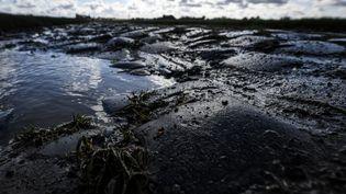 Les pavés boueux de Paris-Roubaix. (DAVID STOCKMAN / BELGA MAG)