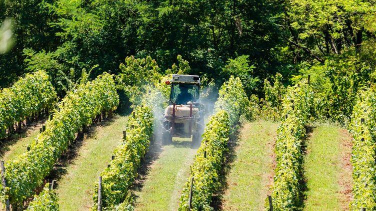 Un épandage de pesticides à Moissac le 23 juillet 2018. (VOISIN / PHANIE / AFP)