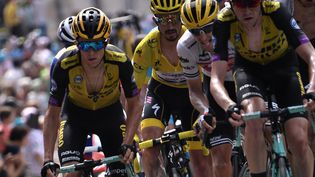 Le Maillot jauneJulian Alaphilippe et d'autres cyclistes dans les derniers kilomètres du Tourmalet, lors de la 14e étape du Tour de France, le 20 juillet 2019. (MARCO BERTORELLO / AFP)