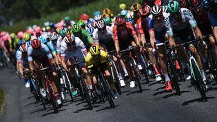 Le Français et maillot jaune Julian Alaphilippe est dans le peloton, lors de la 10e étape de Tour de France, entre Saint-FLour (Cantal) et Albi (Tarn), le 15 juillet 2019.    (JEFF PACHOUD/AFP)