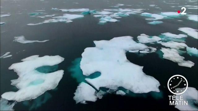 Écologie : les flocons de neige contiennent... du plastique