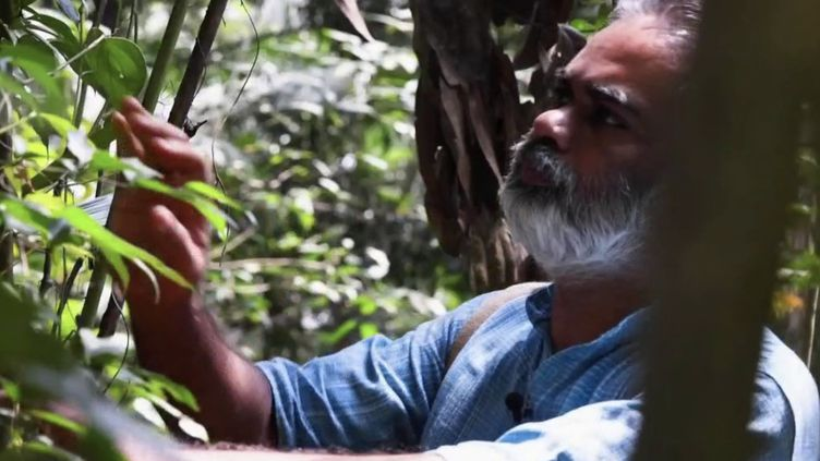 "Un ""médecin des arbres"", en Inde. (CAPTURE ECRAN FRANCE 2)"