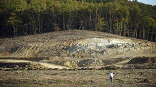 Sur le site de la zone humide du Testet (Tarn), où doit être construit le barrage de Sivens. (REMY GABALDA / AFP)