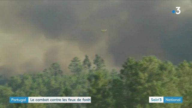Incendies : situation très tendue au Portugal