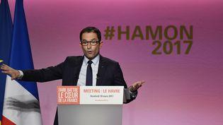 Le candidat PS à la présidentielle Benoît Hamon lors de son meeting au Havre, le 10 mars 2017. (DAMIEN MEYER / AFP)