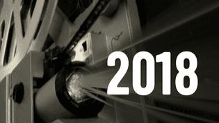 Une année 2018 prometteuse sur grand écran  (France 2 / culturebox)