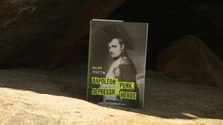 """""""Napoléon - Punk, dépressif... héros"""" de Philippe Perfettini. (CAPTURE D'ÉCRAN FRANCE 3 / S. AGOSTINI)"""