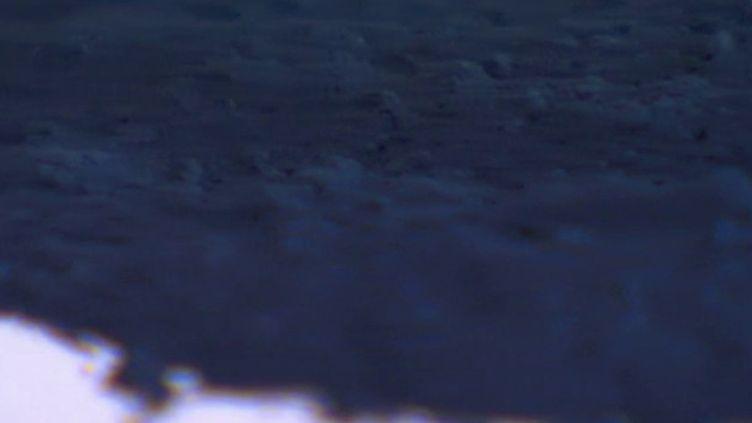 Capture d'écran France 3 (FRANCE 3)