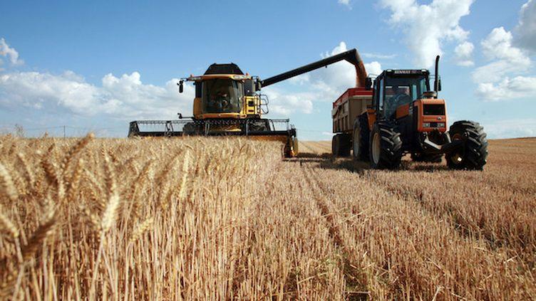 Suicide : les agriculteurs plus à risque (©Fotolia)