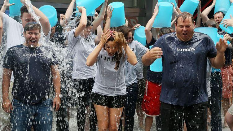 """Des responsables de l'entreprise Tumblr relèvent le défi de """"l'Ice Bucket Challenge"""", à New York (Etats-Unis), le 21 août 2014. (ASTRID STAXIARZ / GETTY IMAGES NORTH AMERICA)"""