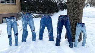 Des jeans congelés tiennent debout dans un jardin, à Saint Anthony, dans le Minnesota, le 30 janvier 2019. (PAM METCALF / VIA REUTERS)
