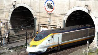 Un train Eurostar quitte le tunnel sous la Manche, avant d'arriver à Coquelles, près de Calais (Pas-de-Calais), le 1er juillet 2010. (DENIS CHARLET / AFP)
