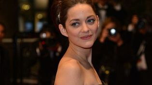 Marion Cotillard  (AFP PHOTO / ALBERTO PIZZOLI)