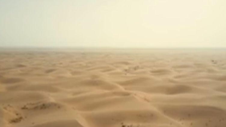 Pour enrayer l'avancée du désert de Gobi, qui gagne près de 3 000 km2 chaque année, la Chine s'est donnée jusqu'en 2050 pour planter la plus grande forêt artificielle du monde. (FRANCE 2)