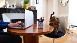 Une personne en télétravail à son domicile. Photo d'illustration. (MAXPPP)