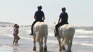 Calais : une patrouille à cheval pour faire respecter les gestes barrières sur les plages (FRANCE 2)