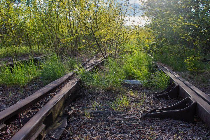 La voie ferrée abandonnée de la rue Venizélos à Montigny-lès-Metz (Moselle), où ont été retrouvés les corps des enfants en 1986. (VIOLAINE JAUSSENT / FRANCEINFO)