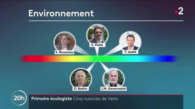 Primaire écologiste : Cinq candidats, cinq visions politiques