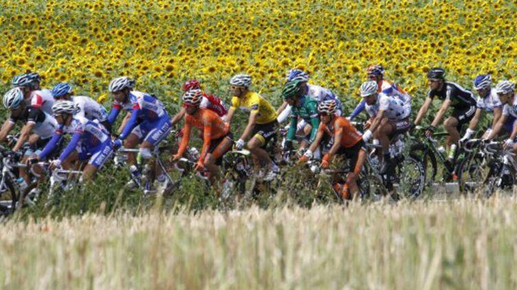 Le peloton du Tour de France (JOEL SAGET / AFP)