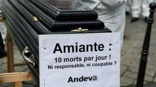 Manifestation del'Association nationale de défense des victimes de l'amiante, à Paris, le 6 novembre 2013. (MICHEL STOUPAK / CITIZENSIDE.COM / AFP)