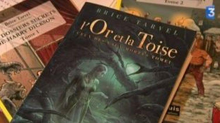 L'or et la toise, le nouveau roman de Brice Tarvel  (Culturebox)