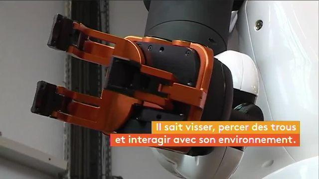 Robot Pyrène