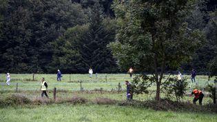 Les bois et les champs aux alentours dePont-de-Beauvoisin (Isère) ont été ratissé par des volontaires à la recherche du moindre indice sur la disparition de la petite Maëlys, samedi 2 septembre 2017. (PHILIPPE DESMAZES / AFP)