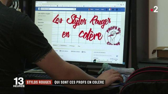 """Les """"stylos rouges"""", des professeurs en colère"""