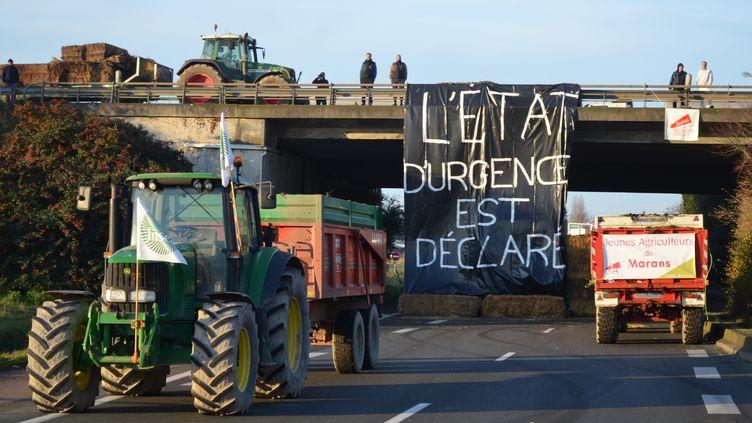 Des agriculteurs bloquent la RN11 à proximité de La Rochelle (Charente-Maritime) le 25 janvier 2016. (FABRICE RESTIER / AFP)