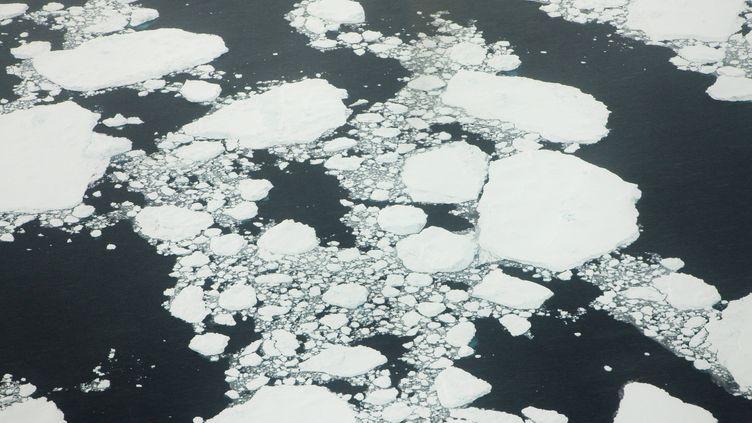 De la glace au Groenland (illustration). (M. LOHMANN / BLICKWINKEL)