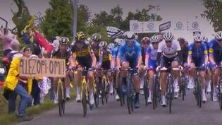 La spectatrice avait fait chuter une partie du peloton avec sa pancarte le 26 juin 2021. (CAPTURE ECRAN FRANCE TELEVISION)
