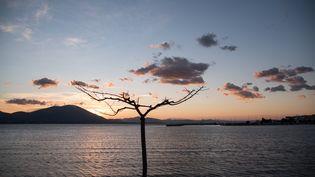 Un coucher de soleil àNea Artaki, sur l'île d'Eubée (Grèce), le 14 février 2019. (WASSILIOS ASWESTOPOULOS / NURPHOTO / AFP)