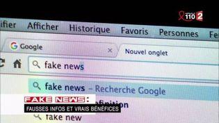 """Fake news : fausses infos et vrais bénéfices. """"Complément d'enquête"""" (FRANCE 2 / FRANCETV INFO)"""