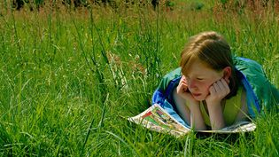 Lecture sur l'herbe  (Chris Windsor / Getty Images)