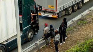 Des migrants qui tentent de passer au Royaume-Uni, autour du site Eurotunnel à Calais, le 29 juillet 2015. (PHILIPPE HUGUEN / AFP)
