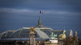 Il n'y a pas de frais de location du lieu. Le Grand Palais accueille l'évènement à titre gracieux. (LIONEL BONAVENTURE / AFP)