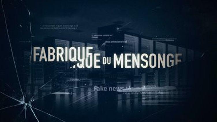 La Fabrique du mensonge (France 5)